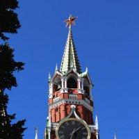 Спасская башня :: Татьяна Тимофеева