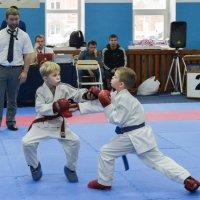 Соревнования по карате :: cfysx