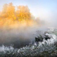 Осенний оазис...2 :: Андрей Войцехов