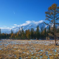 Фотография природы :: Анатолий Иргл