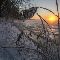 Январский вечер 2016 :: Юрий Клишин
