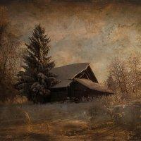зимний пейзаж :: Татьяна Смирнова