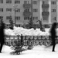 на прогулке :: Alexandr Shemetov