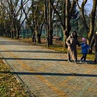 Прогулка в парке :: Алекандр Зиновьев