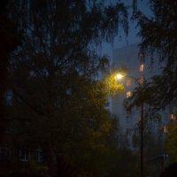Вечер (СЕРИЯ)5 :: Андрей Михайлин