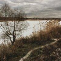 Скоро зима... :: Evgeny St.