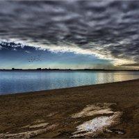 Зимний пляж. :: Anatol Livtsov