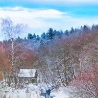 Зимний этюд. :: ALISA LISA
