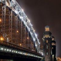 Мост Петра Великого (Большеохтинский) :: Владимир Горубин