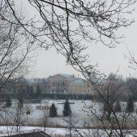 Вид на Константиновский дворец :: Елена Павлова (Смолова)