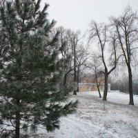 Вид на Путевой Дворец Петра I :: Елена Павлова (Смолова)