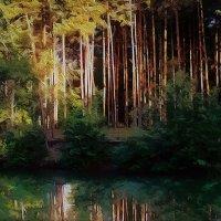 Вечер в лесу :: Николай Васильевич Глушко