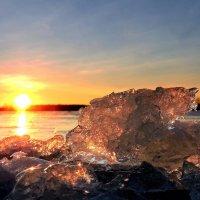 Льдинки на реке. :: Hаталья Беклова
