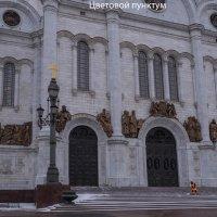 Кесарь :: Алексей Колганов