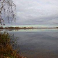Пасмурным ноябрьским днём :: Маргарита Батырева