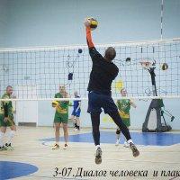 Сосчитай мячи на фото :: Елена Романова