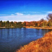 Осень. :: Gene Brumer