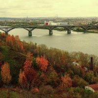 В сказке... :: Андрей Головкин