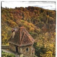 Осень в замке Ксенз :: Николай Милоградский