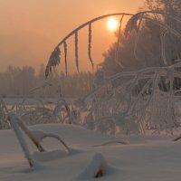 Вечером в парке :: Сергей Герасимов