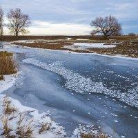 У замёрзшей реки :: Любовь Потеряхина