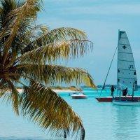 Мальдивы :: Alina Simbirtseva