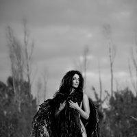 Черный ангел :: Екатерина Кареткина