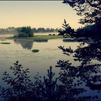 Раннее утро на реке Кубань :: Максим Кирютин