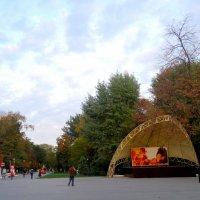 Октябрь в парке... :: Тамара (st.tamara)