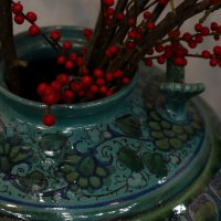 Красные ягодки 2 :: Mariya Zazerkalnaya