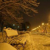 утро первого дня зимы, температура +1 :: Alla Swan