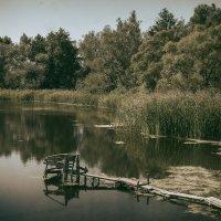 Тихое озеро. :: Андрий Майковский
