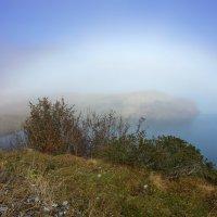 туманная радуга :: Elena Wymann