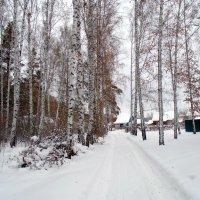 Зима . :: Мила Бовкун