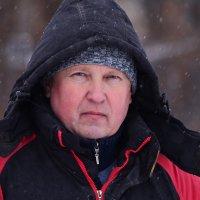 Зимний портрет :: Татьяна Евдокимова