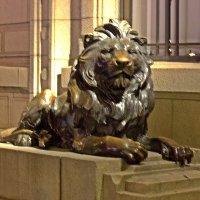 Шанхайский лев . :: Виталий Селиванов