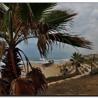 Зимний пляж. :: Leonid Korenfeld