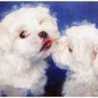Белые собачки :: Александр Чупин