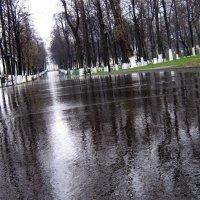 дождь :: Андрей Дружинин