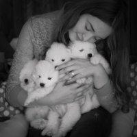 Комки счастья! :: Оксана Фёдорова