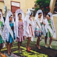 Невесты :: Илья Ткачев