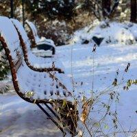 В зимнем парке. :: Стас