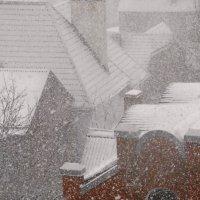 Первый сильный снег в Ростове-на-Дону :: татьяна