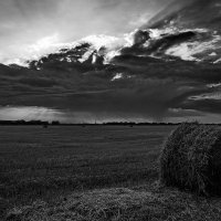 Предвестие бури :: Роман Божков