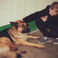 мой хороший друг которого нашол на улице. :: Антон Юров