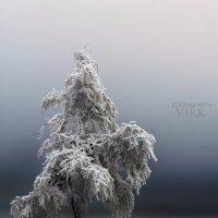 Холодное одиночество :: Виктор Климов