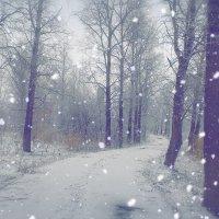 Апрельский снег или та самая дорога :: Ser Gun ...