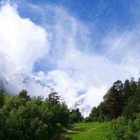 Тропинка в горы. :: Ольга