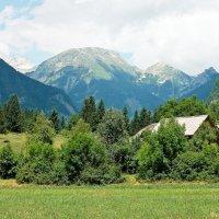 Лучше гор могут быть только......)) :: Светлана Игнатьева
