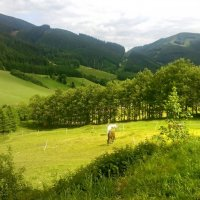 Австрия :: Kameliia Хадлер